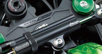 Meer vermogen en RR uitvoering van de Kawasaki ZX-10R + foto's Driving-DUtchman